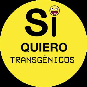 Si a los transgenicos