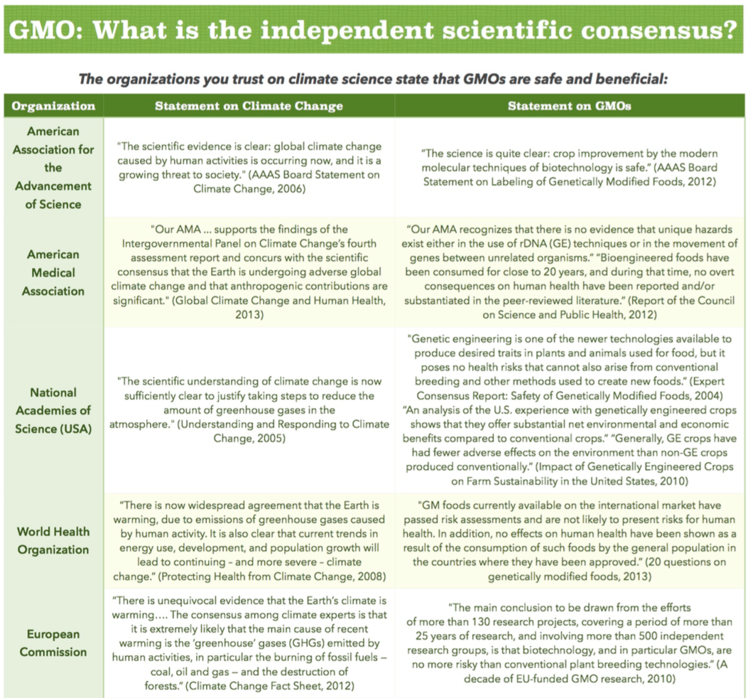 gmo research essay Who we are gmo research offers an online research solution platform that allows access to our multi-panel and multi-country online panel network - asia cloud panel.